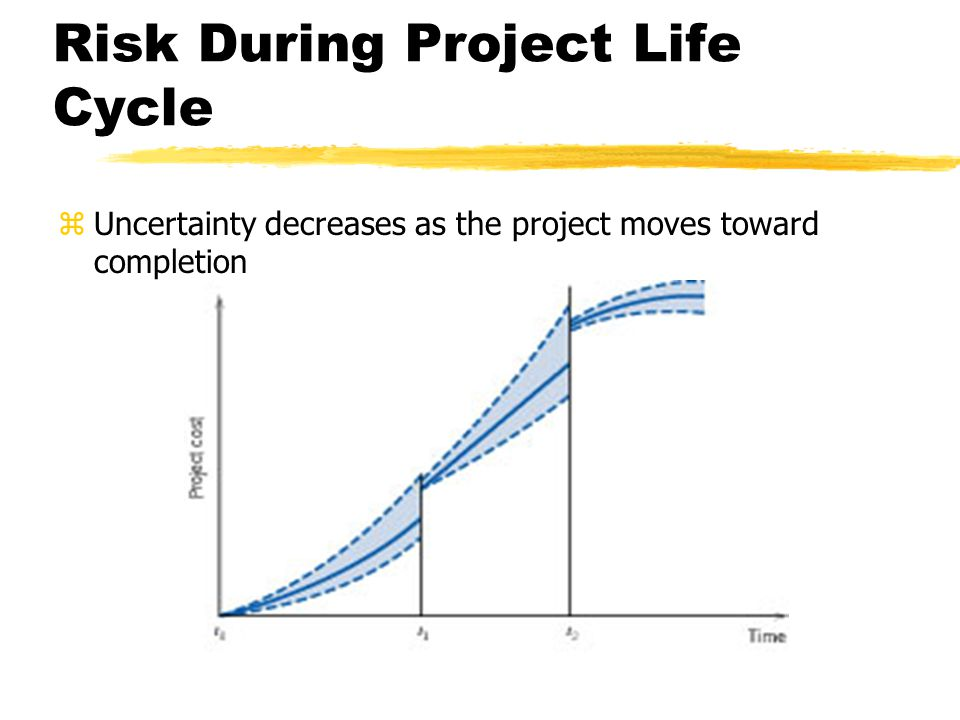 Risk During Project Life Cycle