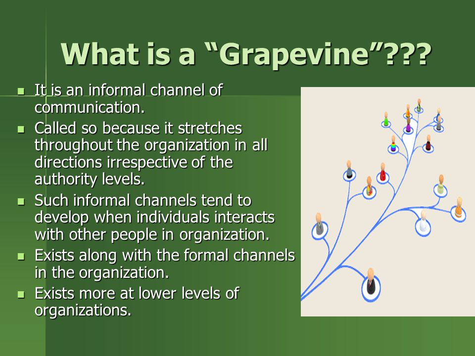What is a Grapevine It is an informal channel of communication.