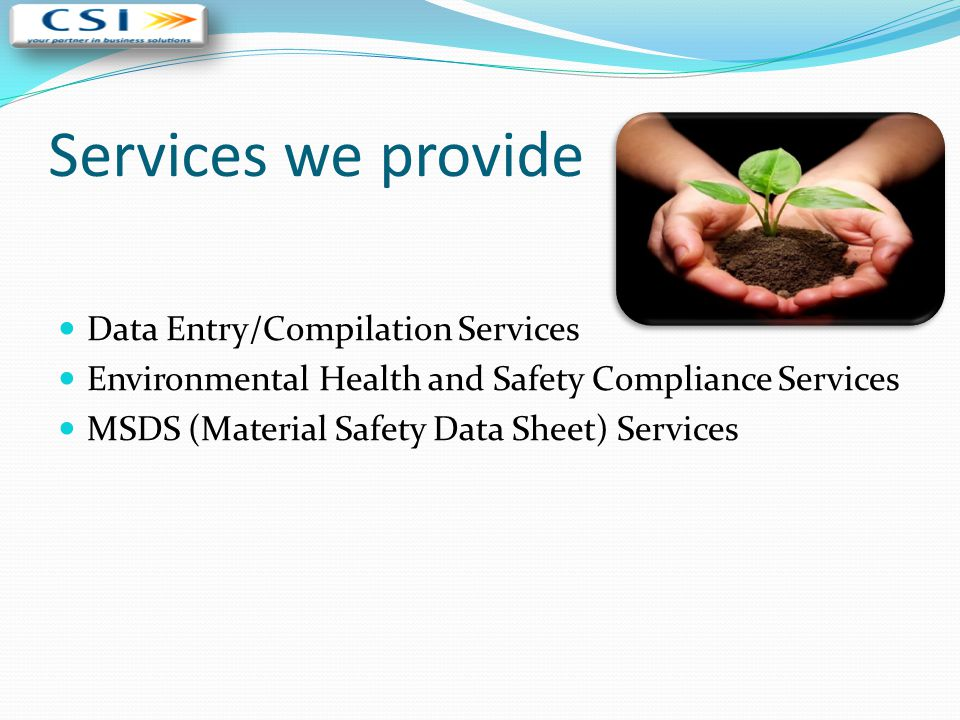 Services we provide Data Entry/Compilation Services