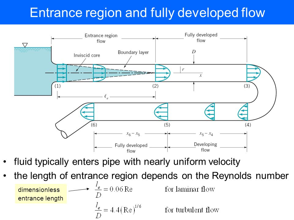Entrance region and fully developed flow