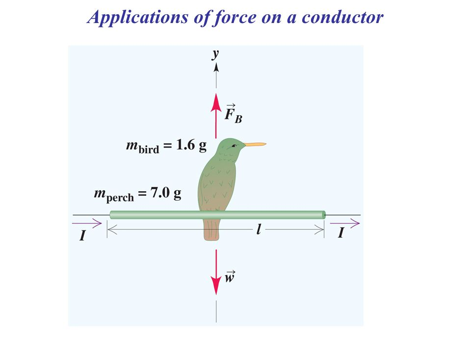 Applications of force on a conductor