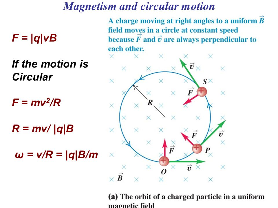Magnetism and circular motion