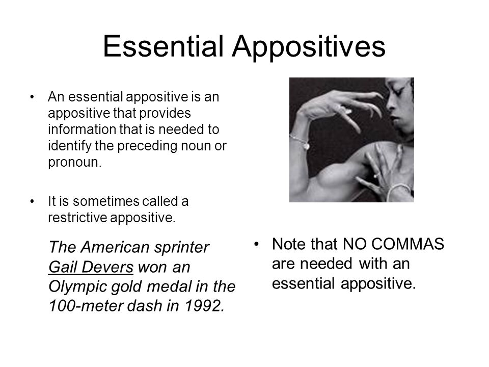 Essential Appositives
