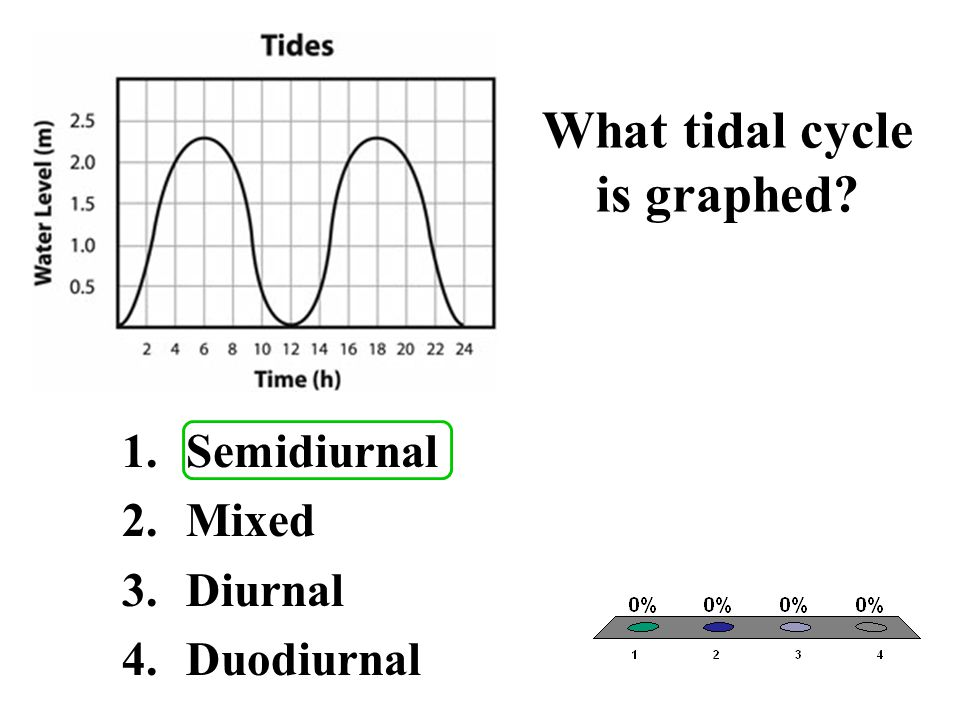 What tidal cycle is graphed