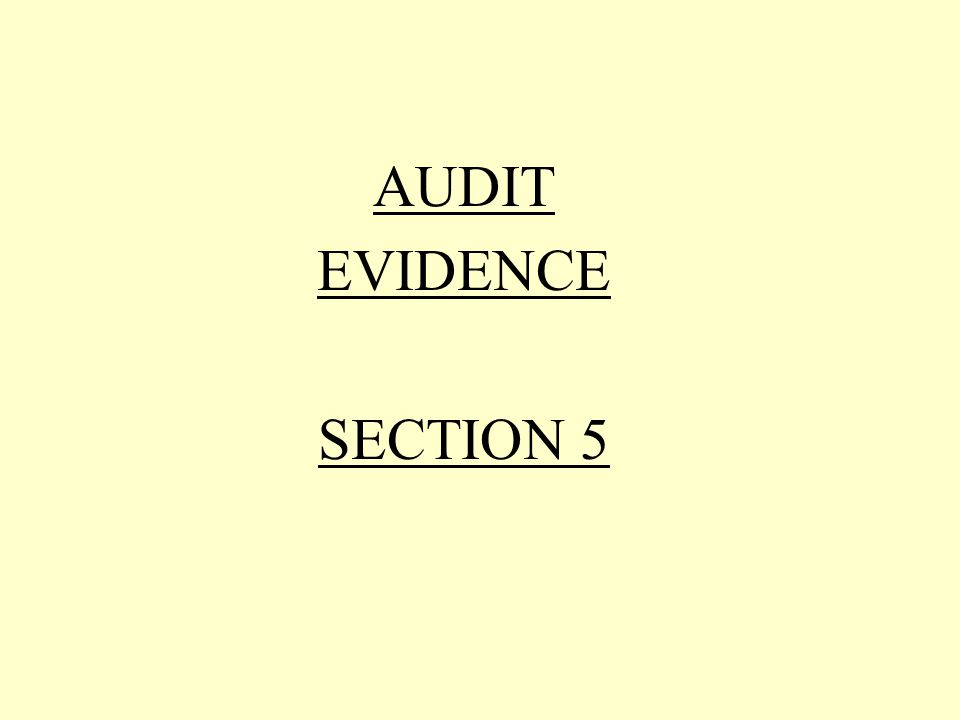AUDIT EVIDENCE SECTION 5