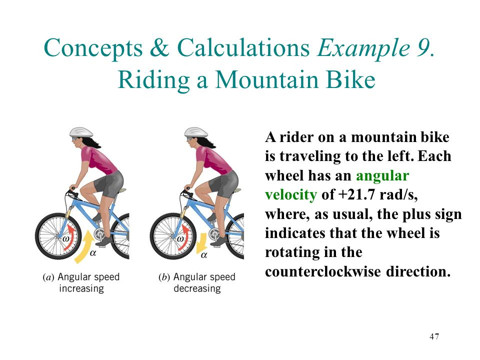 Concepts & Calculations Example 9. Riding a Mountain Bike