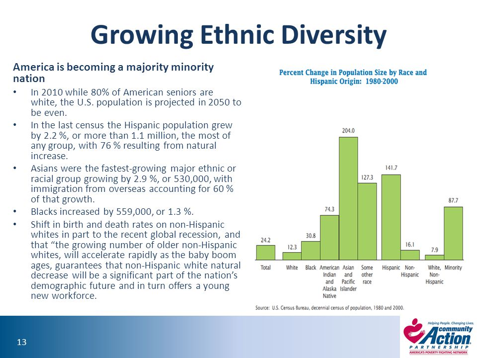Growing Ethnic Diversity