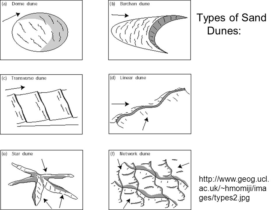 Types of Sand Dunes: http://www.geog.ucl.ac.uk/~hmomiji/images/types2.jpg