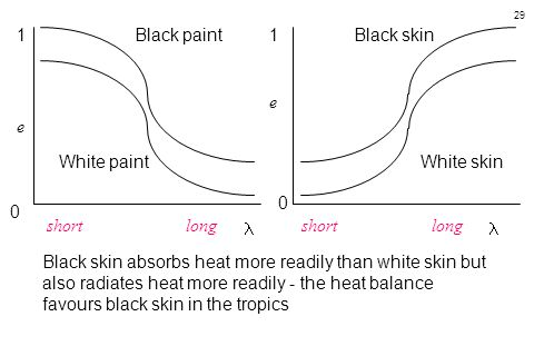 1 Black paint. 1. Black skin. e. e. White paint. White skin. short long.
