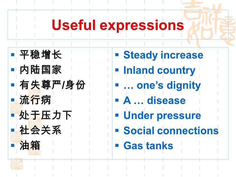 Useful expressions 平稳增长 内陆国家 有失尊严/身份 流行病 处于压力下 社会关系 油箱 Steady increase