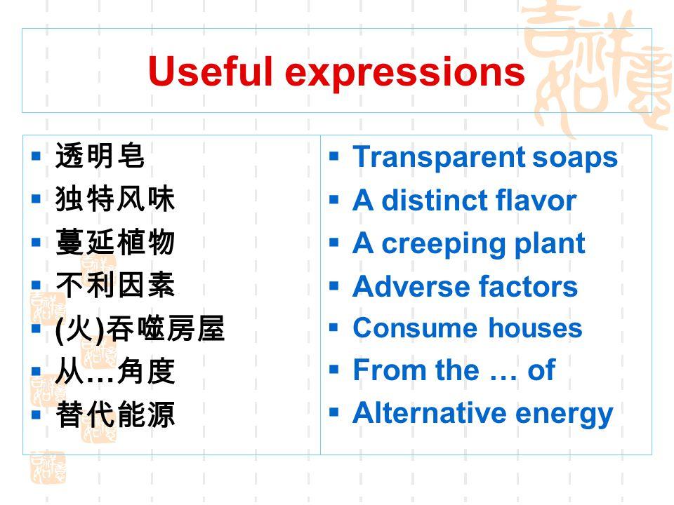 Useful expressions 透明皂 独特风味 蔓延植物 不利因素 (火)吞噬房屋 从…角度 替代能源