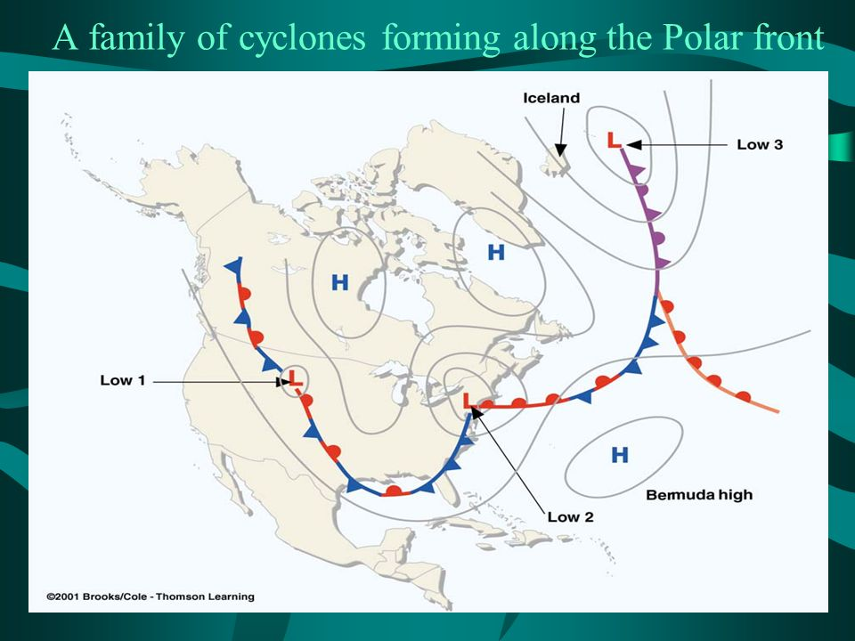 A family of cyclones forming along the Polar front