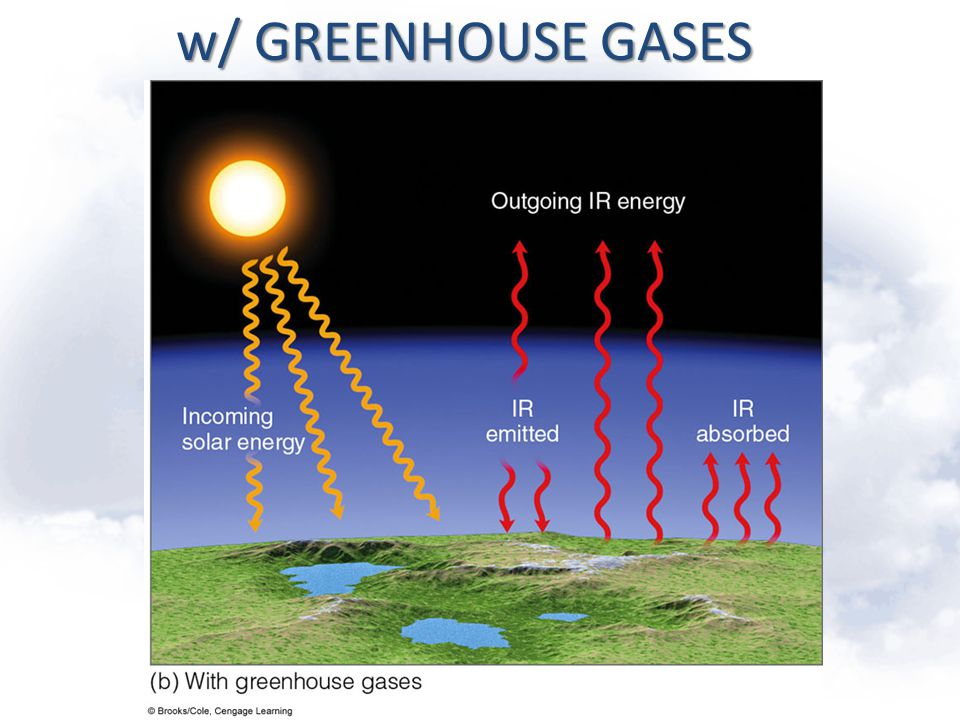 w/ GREENHOUSE GASES