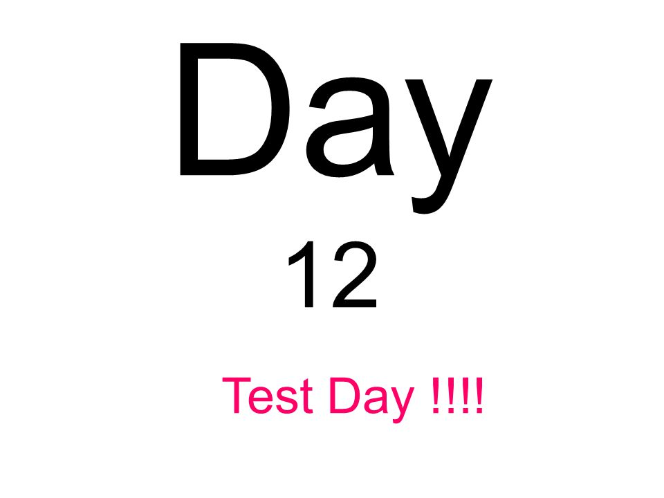 Day 12 Test Day !!!!