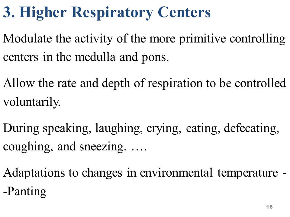 3. Higher Respiratory Centers