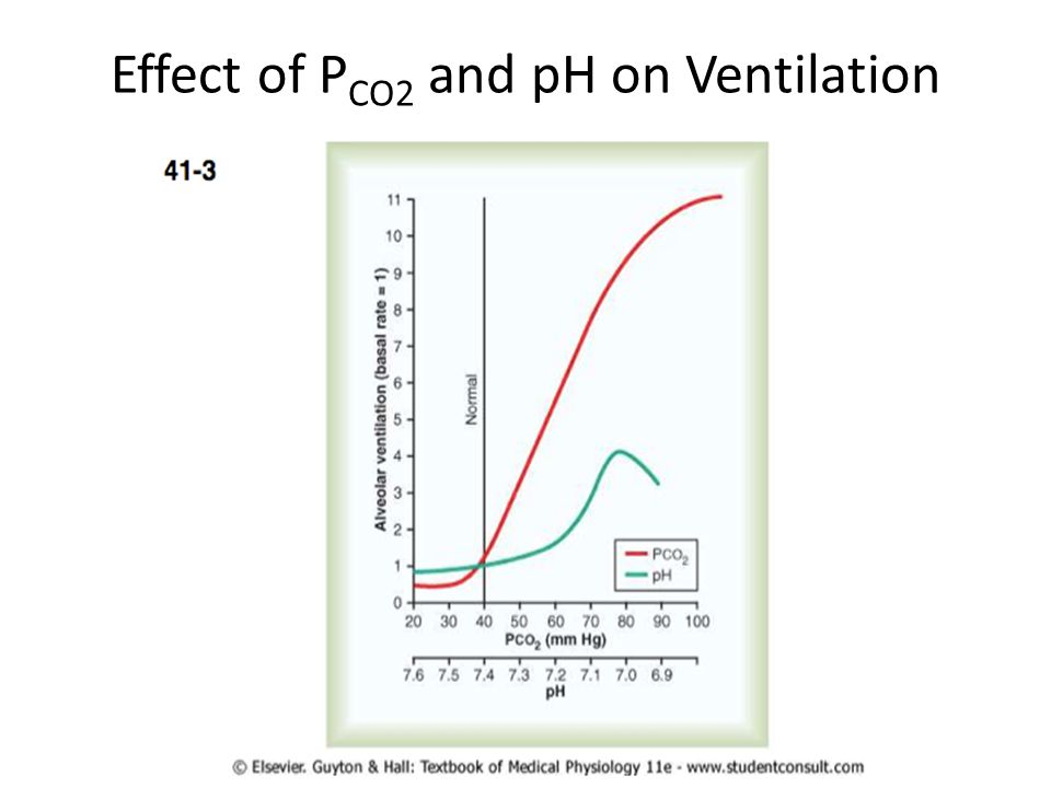Effect of PCO2 and pH on Ventilation
