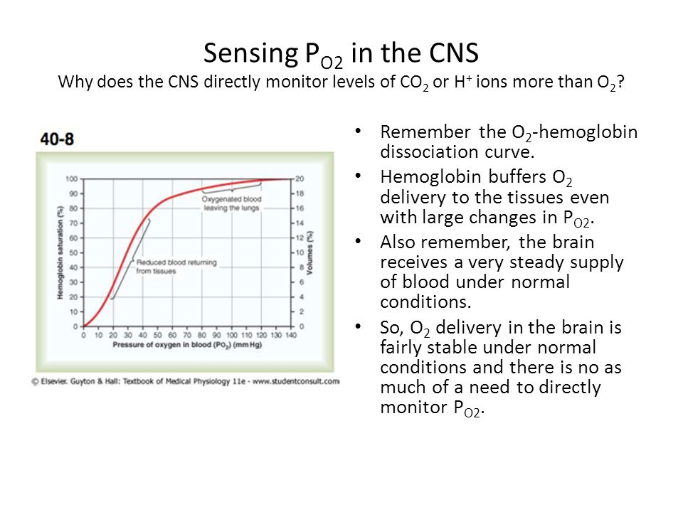 Sensing PO2 in the CNS Why does the CNS directly monitor levels of CO2 or H+ ions more than O2