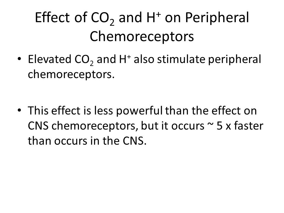 Effect of CO2 and H+ on Peripheral Chemoreceptors