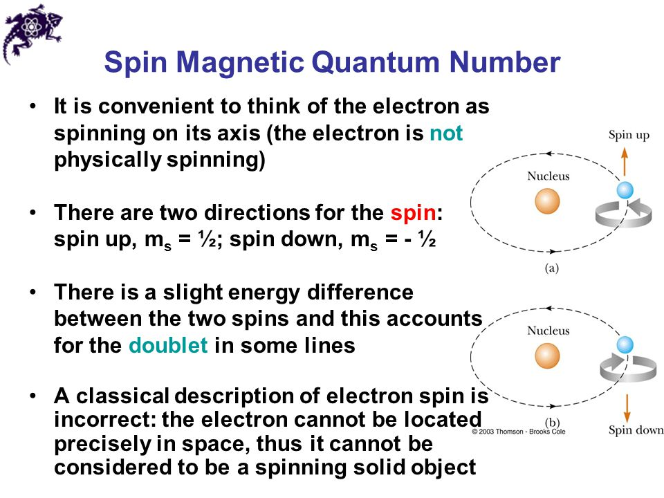 Spin Magnetic Quantum Number