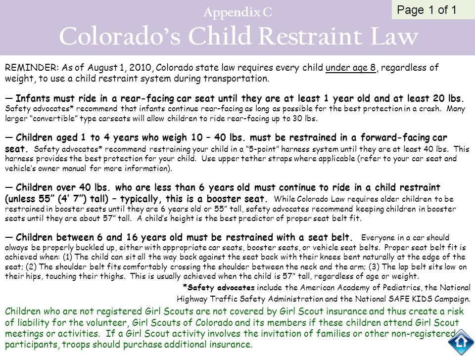 Appendix C Colorado's Child Restraint Law