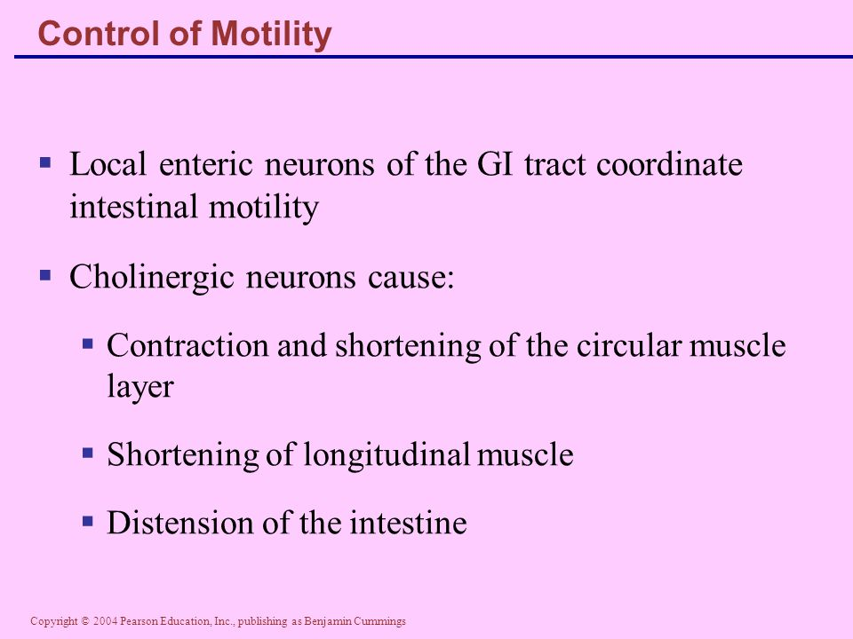 Local enteric neurons of the GI tract coordinate intestinal motility