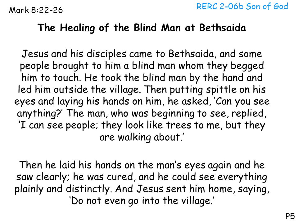 The Healing of the Blind Man at Bethsaida