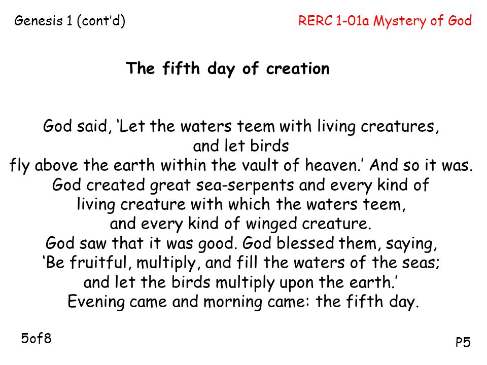 The fifth day of creation