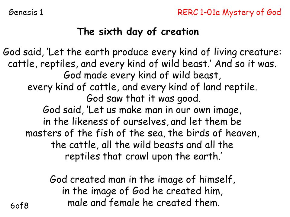 The sixth day of creation