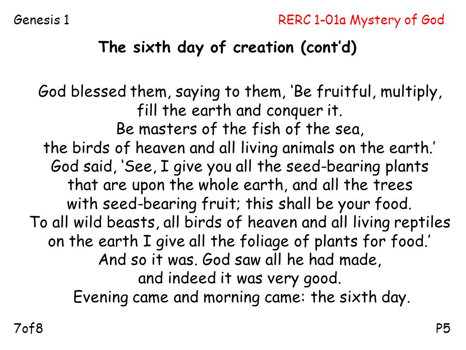 The sixth day of creation (cont'd)