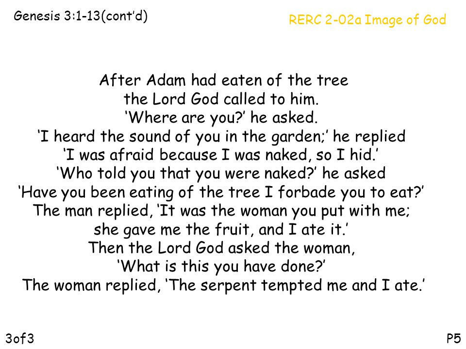 After Adam had eaten of the tree the Lord God called to him.