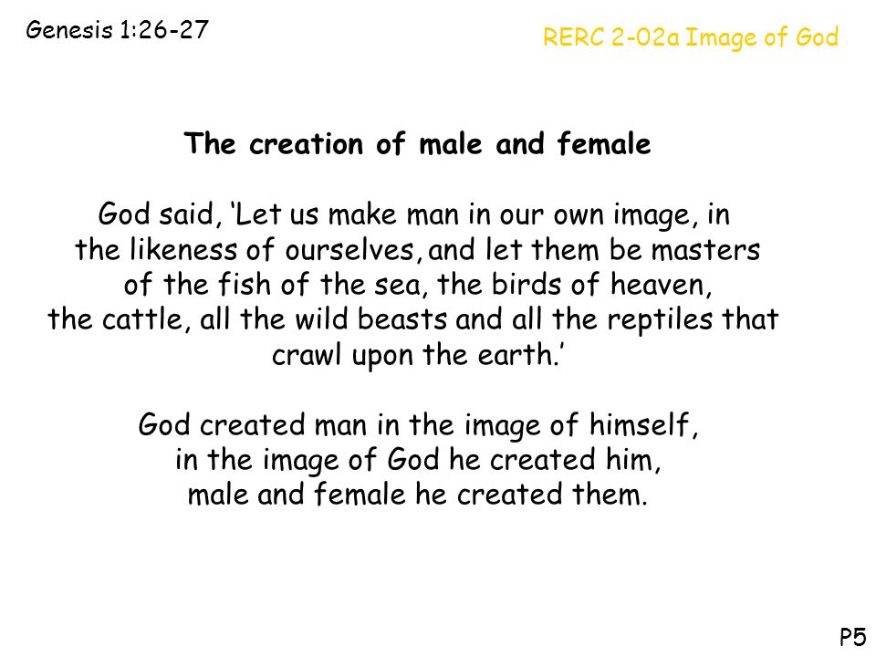The creation of male and female