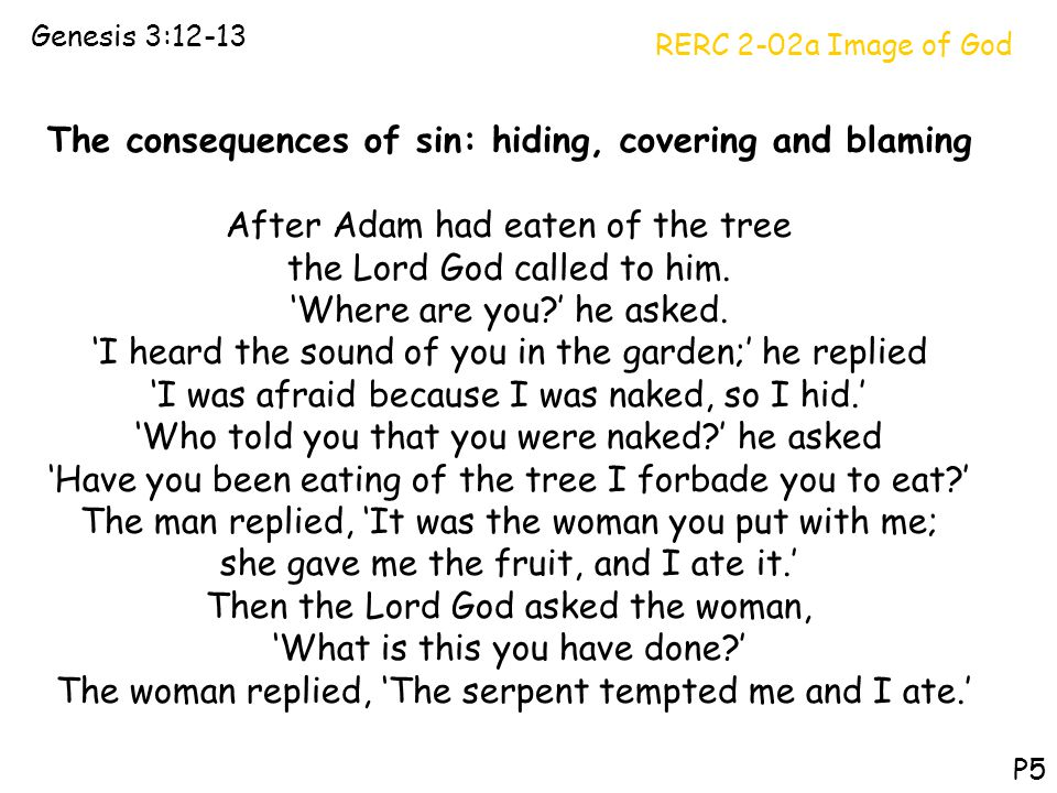 The consequences of sin: hiding, covering and blaming