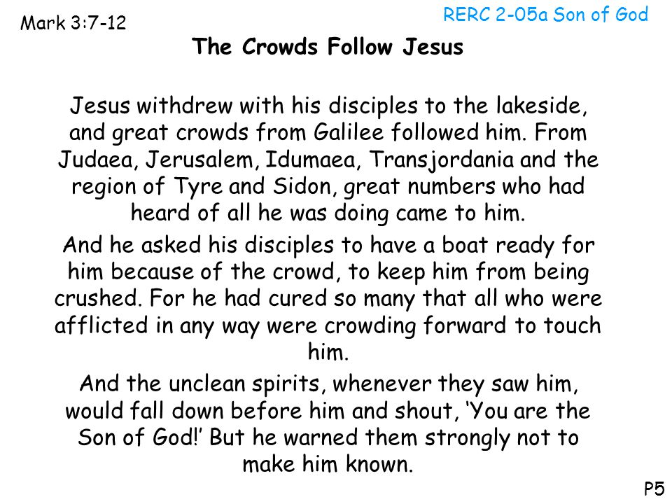 The Crowds Follow Jesus