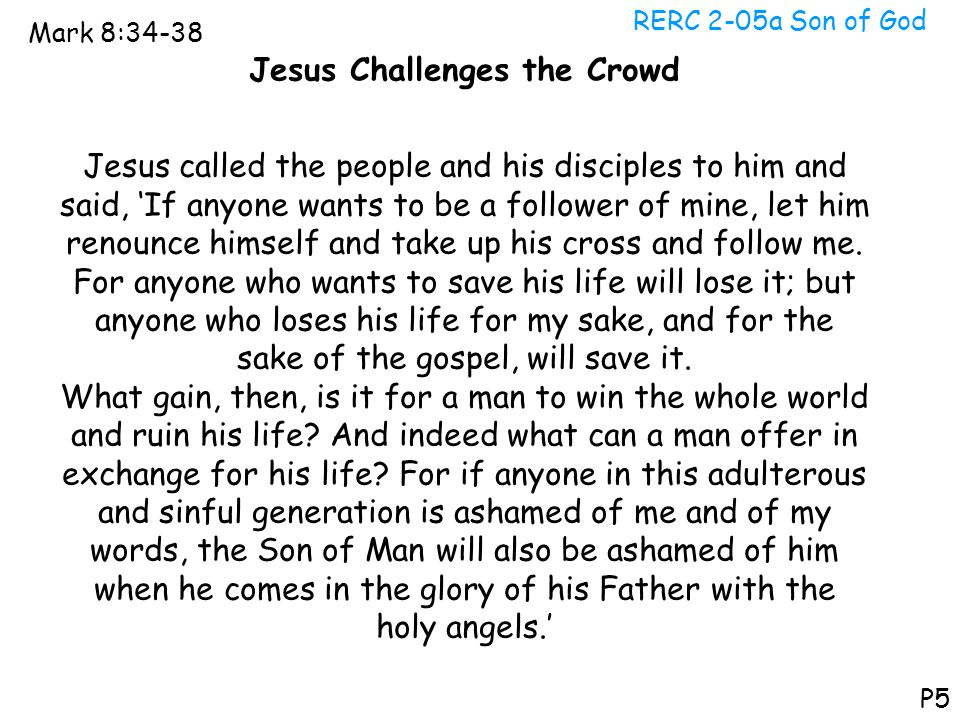 Jesus Challenges the Crowd
