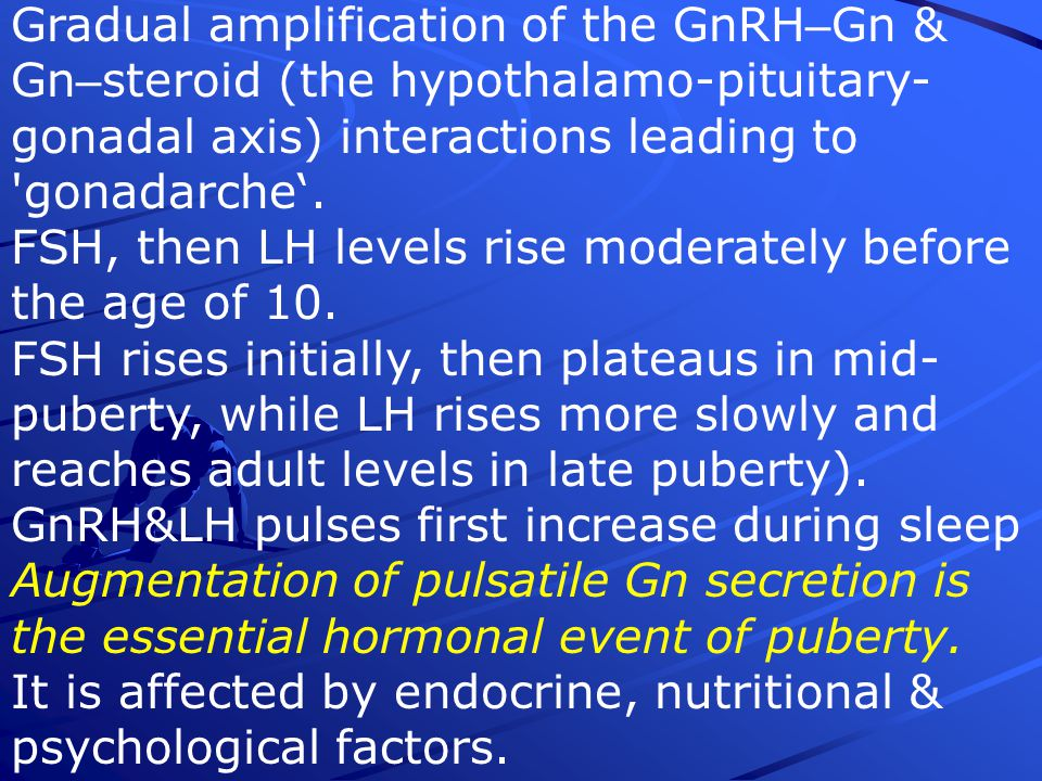 Gradual amplification of the GnRH–Gn & Gn–steroid (the hypothalamo-pituitary-gonadal axis) interactions leading to gonadarche'.