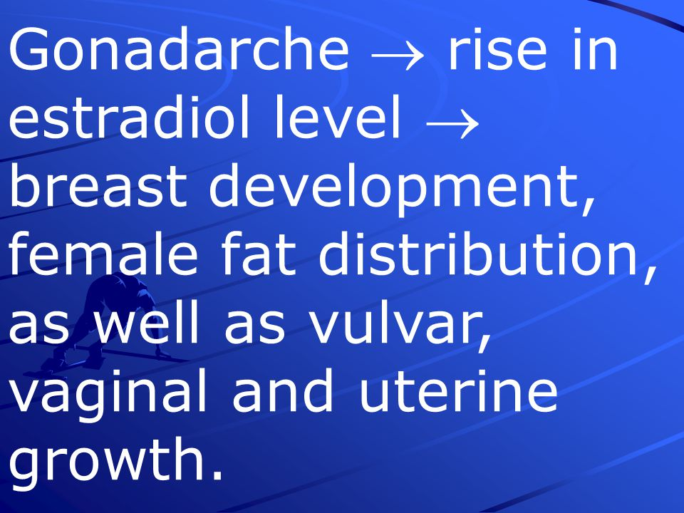 Gonadarche  rise in estradiol level  breast development, female fat distribution, as well as vulvar, vaginal and uterine growth.