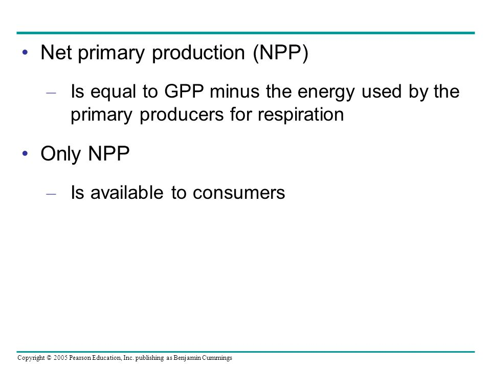 Net primary production (NPP)