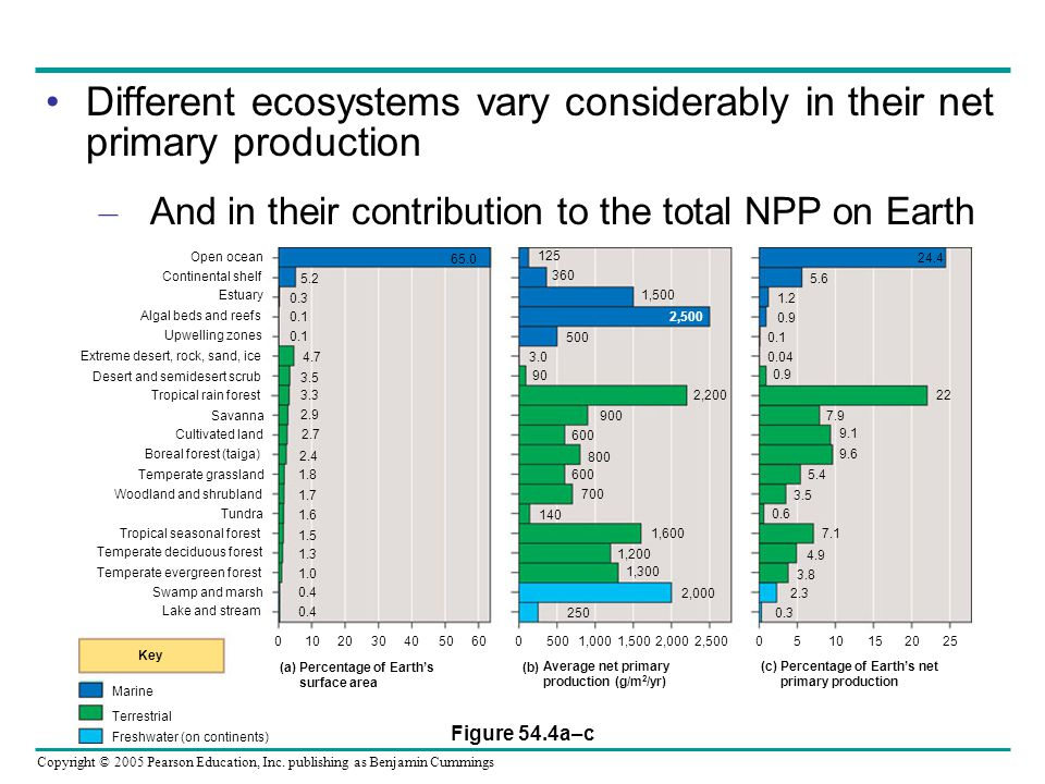 Different ecosystems vary considerably in their net primary production