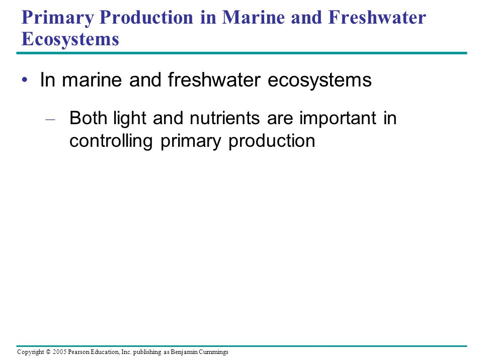 Primary Production in Marine and Freshwater Ecosystems