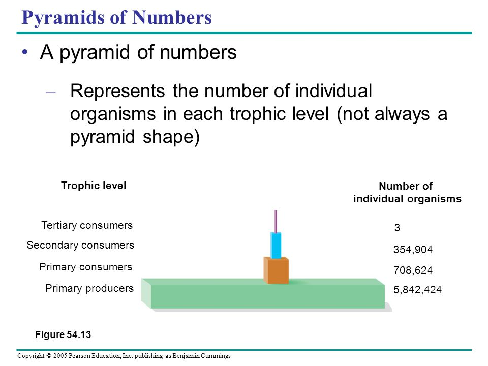 Number of individual organisms