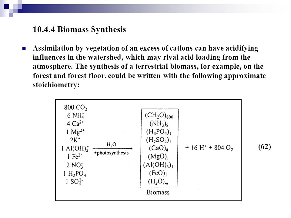 10.4.4 Biomass Synthesis