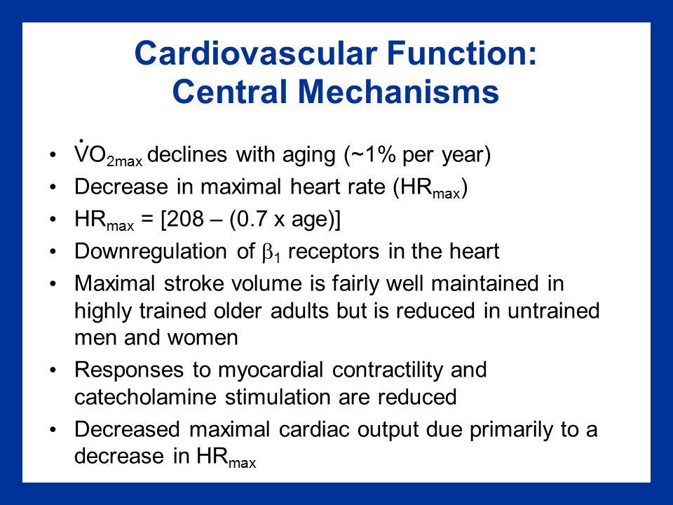 Cardiovascular Function: Central Mechanisms