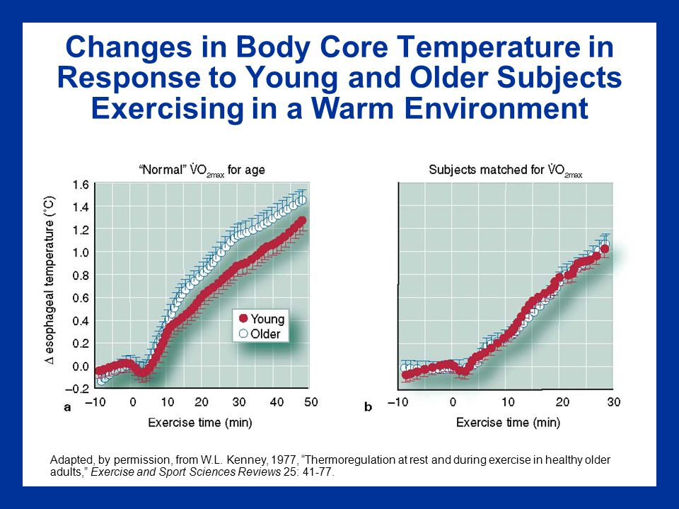 Changes in Body Core Temperature in Response to Young and Older Subjects Exercising in a Warm Environment