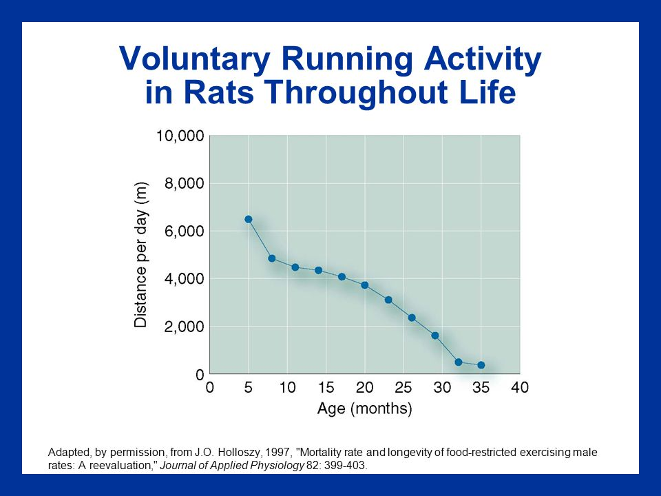 Voluntary Running Activity in Rats Throughout Life