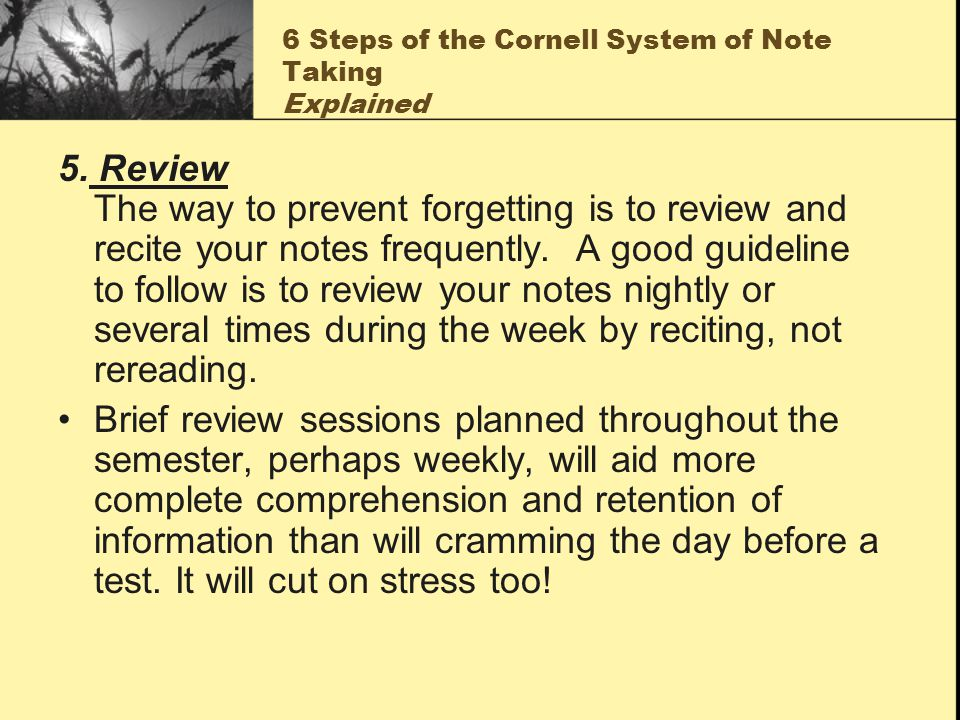 6 Steps of the Cornell System of Note Taking Explained