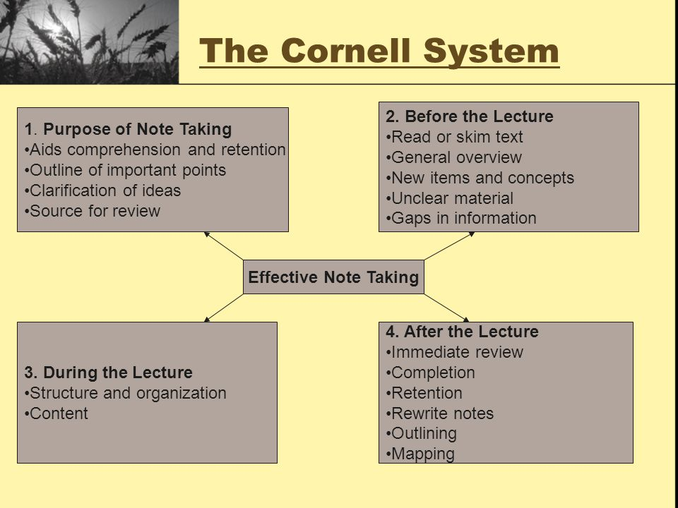 The Cornell System 2. Before the Lecture Read or skim text