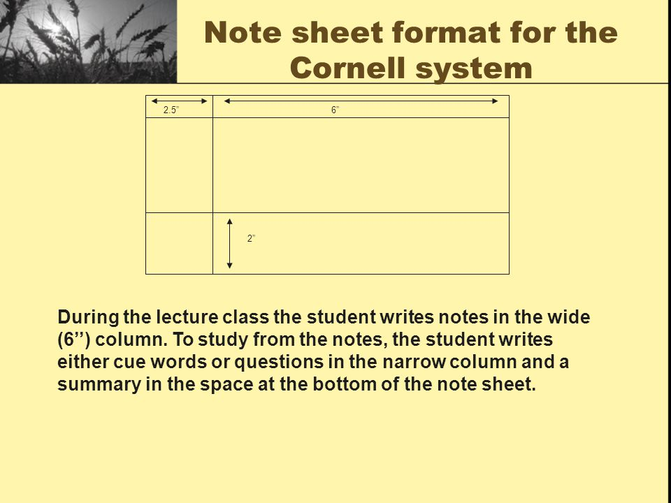 Note sheet format for the Cornell system