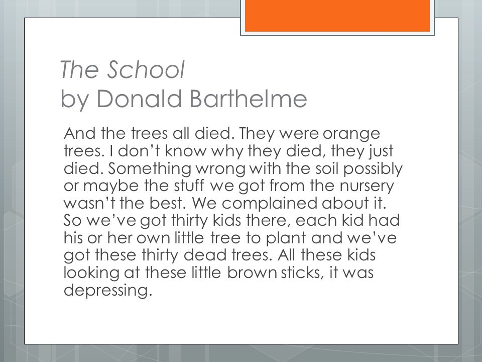 The School by Donald Barthelme