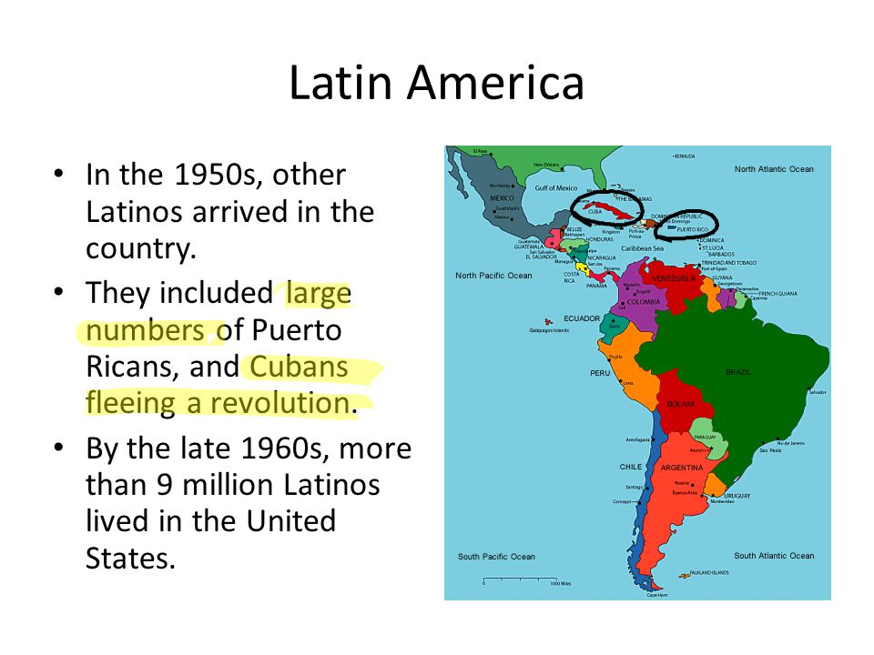 Latin America In the 1950s, other Latinos arrived in the country.