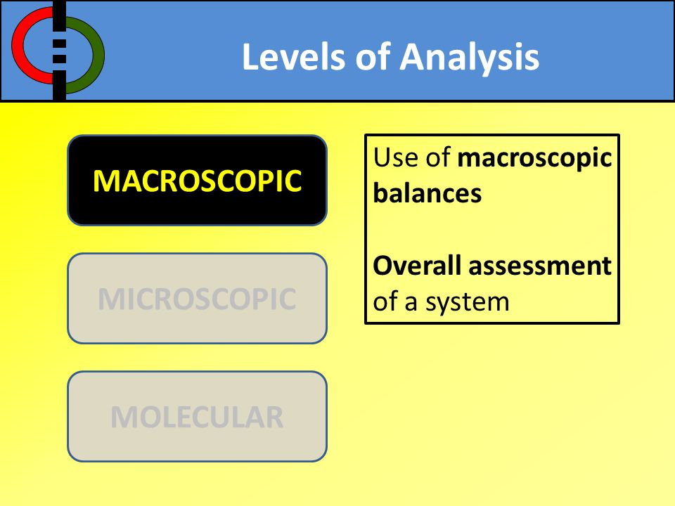 Levels of Analysis MACROSCOPIC MICROSCOPIC MOLECULAR